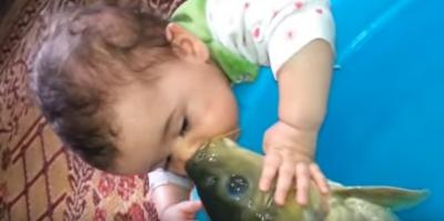 Balıktaki insan sevgisi duygulandırdı